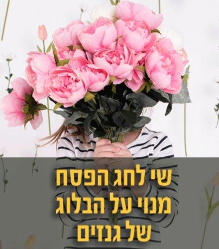 שי לחג הפסח – מנוי על הבלוג של גנזים